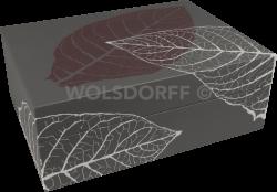 Zino Humidor SM Graphic Leaf diverse Ausführungen