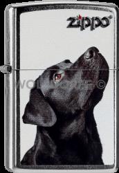 Zippo 60000206 #207 Black Labrador