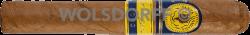 Santa Damiana Special Edition 2020