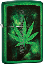 Zippo 60004264 #24840 Green Leaf